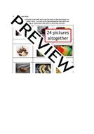 Food-Prep-Skills-1-wkbk-preview.pdf