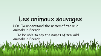 Les animaux sauvages (Wild animals in French)