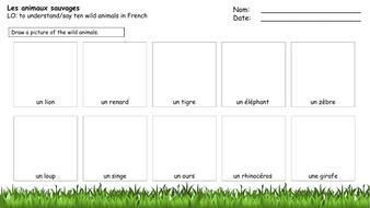 Wild-animals-worksheet.pptx