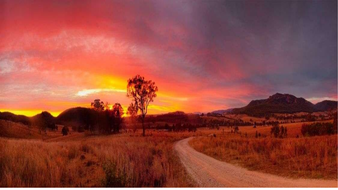 australian landscapes in relation to Fox book by Magaret wild