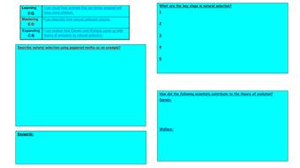 Genetics-Turquoise-revision-task.pdf