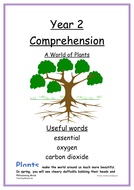 Year-2-comprehension-higher-ability---Plants.docx