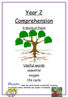 Year-2-comprehension-middle-ability---Plants.docx
