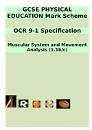 Muscular-System-(1.1b.c)-assessment.answers.doc