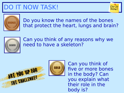 1.Functions-of-the-skeleton-and-upper-body-bones-.ppt