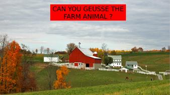 GEUSSE-THE-FARM-ANIMAL.pptx