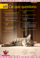 Cats Protection Cat Quiz