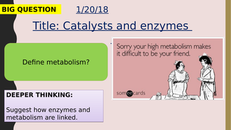 AQA new specification-Catalyst and enzymes-B3.4