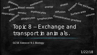 Edexcel GCSE 9-1 Biology Topic  8 – Exchange and Transport in Animals