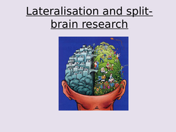 L6-Lateralisation-and-split-brain-research.pptx