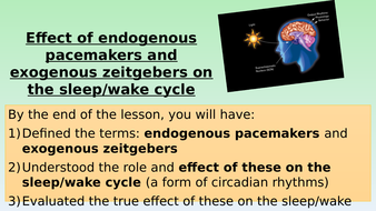 L14-Endogenus-pacemakers-and-exogenous-zeitgebers.pptx