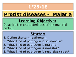 AQA GCSE 9-1 - Malaria (Protist disease)