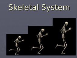 This resource explains the skeletal system in biology for IGCSE