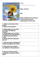 27.-Sunflowers.docx