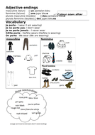 Adjective Endings and Clothes in French - les vêtements