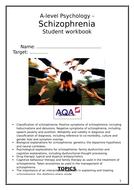 Schizophrenia-workbook.docx