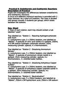 21b---C6.1-PRACTICAL-2---End---Exothermic-Reactions---Technician-Sheet.docx
