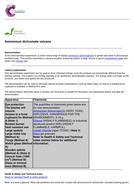 21a---C6.1---DEMO-Endothermic-Ammonum-Dichromate-Volcano.pdf