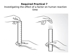 reaction time practical