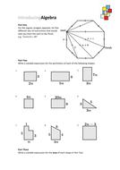 Introducing-Algebra-7.pdf