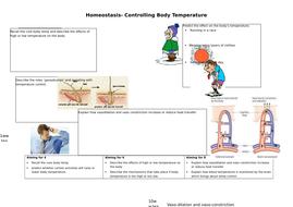 AQA GCSE Controlling Body Temperature