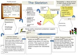 The-Skeleton-Lesson-Ob.docx