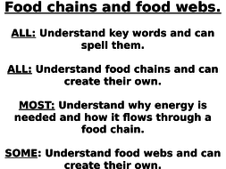 Food chains and food webs. Feeding relationships. Ecology
