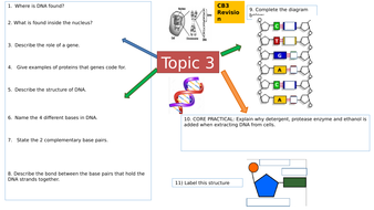 Y9-CB3-DNA--genetic-diagrams--and-mutations-Mind-Map.pptx