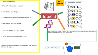 Y9-CB3-DNA--genetic-diagrams--and-mutations-Mind-Map-Colour-coded.pptx