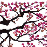 blossom-sq.jpg