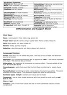 Differentiation-and-support-sheet.docx