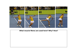 How do we use different muscle fibres during a tennis match?
