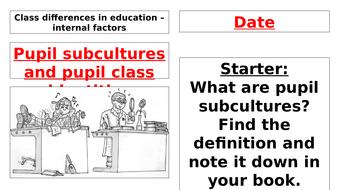 Pupil Subcultures