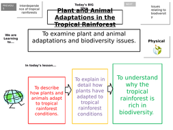 plant-and-animal-adaptations.pptx