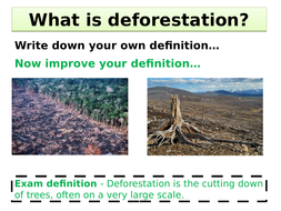 Changing-rates-of-deforestation.pptx