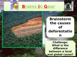 Causes-of-deforestation.pptx