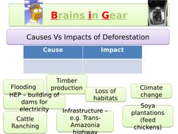 Impacts-of-deforestation.pptx