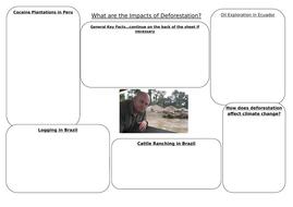 Worksheet-for-Deforestation.docx