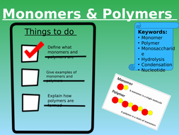 Lesson-1---Monomers-and-Polymers.pptx