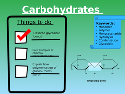 Lesson-2---Polymerisation-of-Carbohydrates---Copy.pptx