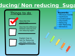 Lesson-3--Reducing-and-Non-Reducing-Sugars---Copy.pptx
