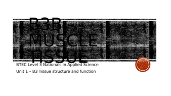 B3b---Muscle-tissue.pptx