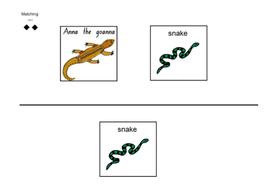 snake-wrk.docx