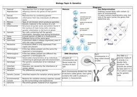 Knowledge-Organiser---Biology-Topic-6-Genetics.docx