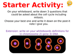 Lesson-2---Cell-Cycle-Part-2.ppt