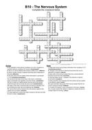 B10-answers.pdf