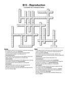 B13-answers.pdf