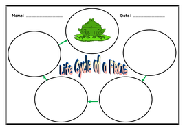 Life Cycle of a Frog - 3 page booklet