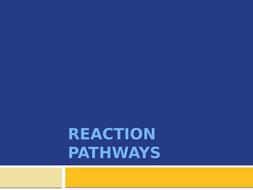 Reaction-Pathways.pptx