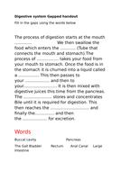 Digestive-system-Gapped-handout.docx